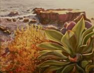 Laguna Agave 13x15 Framed $325