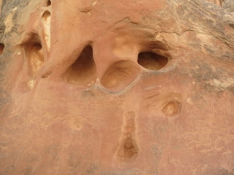 Anybody else see a face here?